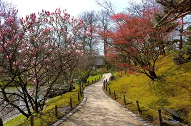 Japanese Garden – Hasselt