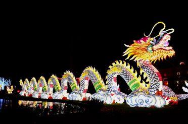 China Light Zoo – Antwerpen