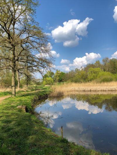 Wintershoven