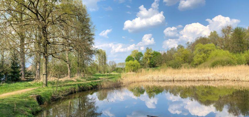 Wandeling door natuurgebied Eggertingen – Guigoven