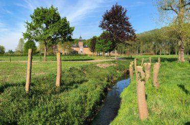 Wandelen door Greenspot Zammelen en natuurgebied Eggertingen – Guigoven