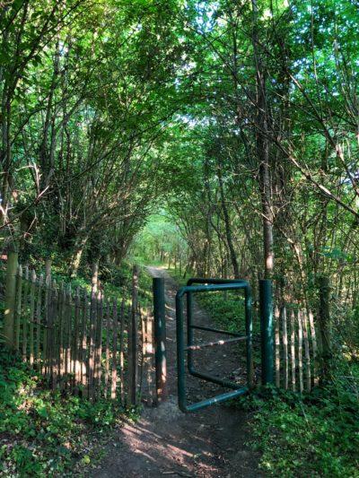 Natuurgebied Herenbos
