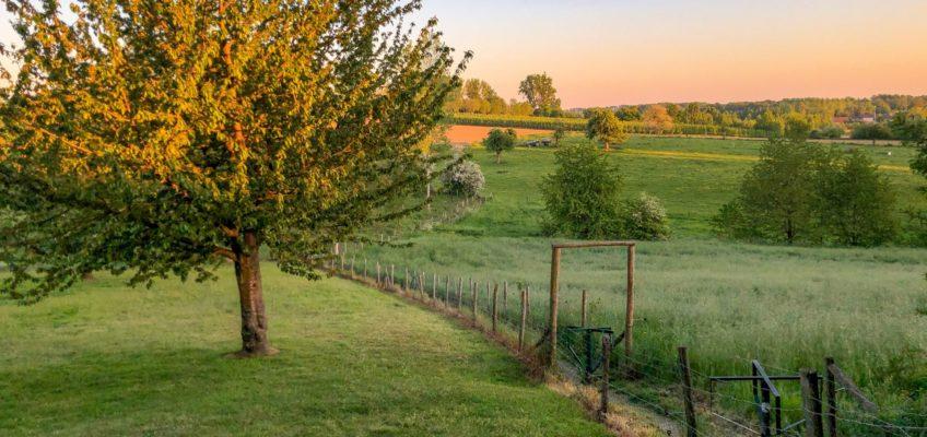 Landschapswandeling Zammelen