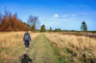 Wandeling naar de Cascade du Bayehon – Longfaye