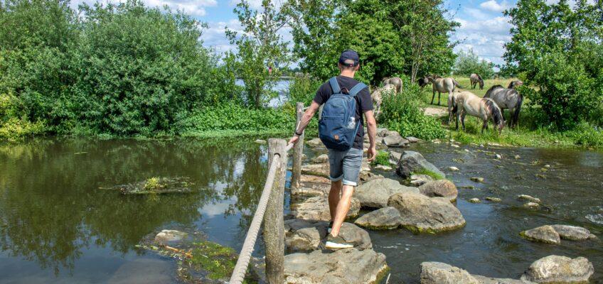 Wandeling rond de Molenplas – Ohé en Laak